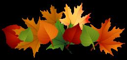 fall-leaves-fall-clip-art-autumn-clip-art-leaves-clip-art-clipart